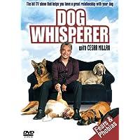 Dog Whisperer: Fears And Phobias