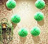 My Party Suppliers Light Green Hanging Tissue Paper Flower Pom Pom, Party Garland Decoration