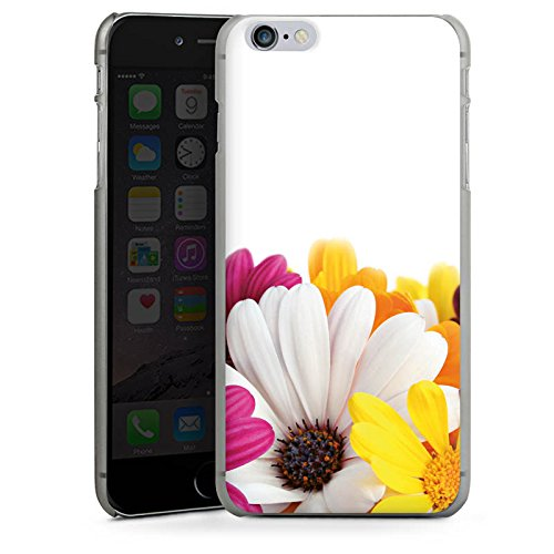 Apple iPhone X Silikon Hülle Case Schutzhülle Blumen Margerite Blüten Hard Case anthrazit-klar