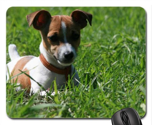 Jack Russel Terrier Mouse Pad, Mousepad (Dogs Mouse Pad) (Jack-russel-terrier-rock)