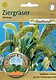 Ziergräser Mischung Saatband für Balkon & Terrasse halbhohe Sorten gut für Trockengestecke 53090