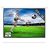 200 x 150cm Vinylfaser Rollo-Leinwand für HDTV Heimkino Beamer Projektoren (Gainfaktor 1.0 ,  254 cm , 4:3)