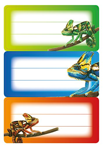 Herma 5876 Buchetiketten Schule, Motiv Gecko, Inhalt: 9 Schuletiketten für Schulhefte, Format 7,6 x 3,5 cm