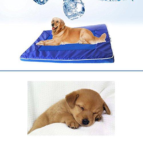 bulary Pet Kühlmatte mit Mesh Kühlung Pet bett Sofa Bett Kühlung Pad waschbar Komfortable Kühlung Matte Kissen Sofa Cool Net Bett für Hunde, Katzen oder Puppy