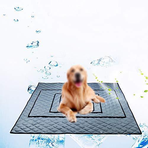 chengsan Trainingspads für Welpen, waschbar, wiederverwendbar, wasserfest, schnell absorbierend