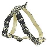 CHAPUIS SELLERIE SLA381 Verstellbares Hunde- und Katzengeschirr - Velours-Gurt Leoparden-Look - Breite 10 mm - Maße 20-35 cm - Größe XS