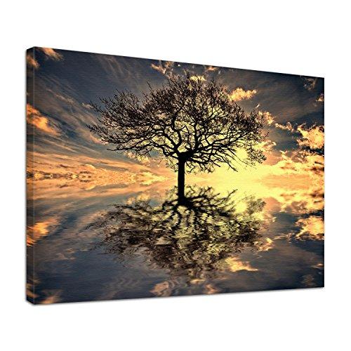 Leinwand Bild edel Natur Lebensbaum Größe 60 x 40 cm