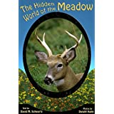 The Hidden World of the Meadow (English Edition)