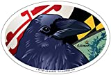 Citizen Baltimore Raven Oval Magnet, 15,2 x 10,2 cm – Euro Car Kühlschrank Locker Vinyl Magnet