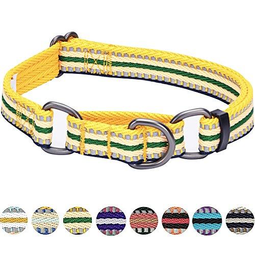 Blueberry Pet 2,5cm L 3M Reflektierendes Bunt Gestreiftes Gelb und Grün Sicherheitstraining Martingale Hundehalsband für Große Hunde (Martingal Grün)