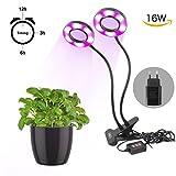 LED Pflanzenlicht – Fördert das Pflanzenwachstum mit Zeitfunktion, Hydrokultur Gewächshaus Gartenlampe Pflanzenwachstum & Blumen Computertisch Büro USB Nachttischlampe (Large with Timer Function)