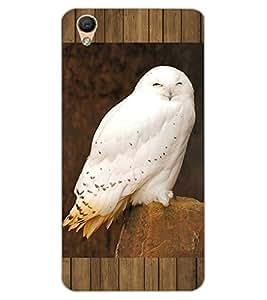 ColourCraft Cute Owl Design Back Case Cover for OPPO F1 PLUS