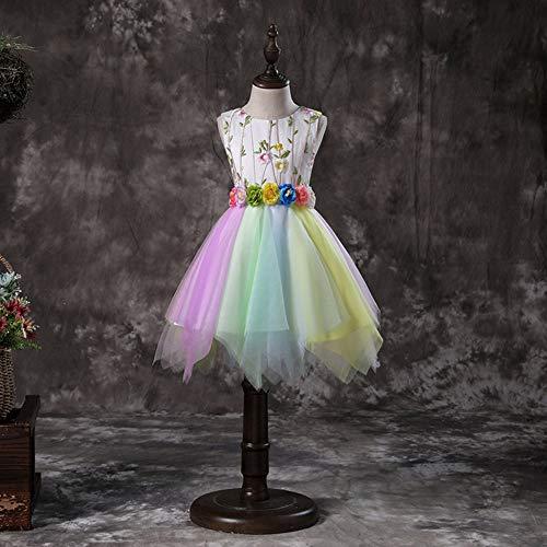 HZ andi Weste Mädchen Kleid süße Prinzessin Kleid Kostüme Pettiskirt Mesh Rock Bunte ärmellose Blume Fee Kleid dreidimensionales Stickerei ()
