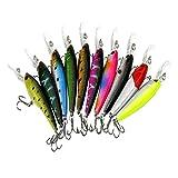 LQZ(TM) 10 x Leurres Flottante Set Kit Appât de Pêche Hameçons Accessoires Spinnerbaits Cuillère Mouche Topwater Artificiel