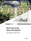 Die Musik in der Kultur des Barock (Handbuch der Musik des Barock / In 8 Bänden, Band 7)