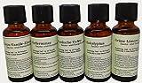 Sauna - Dampfbad Konzentrat 5 x 30 ml Set mit 5 Düften 1 ml reicht für 1 Liter Aufguss