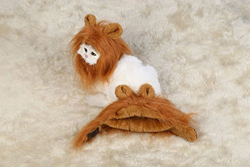 LUUFAN Lion Mähne Perücke für Hund und Katze Kostüm mit Ohren Haustier einstellbare komfortable Fancy Lion Haar Hund Kleidung Kleid für Halloween Weihnachten Ostern Festival Party Activity (Cat- 2) (Halloween Ohren Lion)