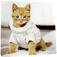 Federa per cuscino in poliestere gattino con maglione 40x40. FRA549511 STAMPA FRONTE RETRO
