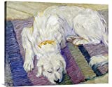 Global Galerie gcs-265158–91,4–360,7cm Franz Marc liegender Hund (Hundeportrat) Galerie Wrap Giclée-Kunstdruck auf Leinwand Art Wand
