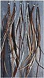 Muelle Extensions 10Pack individuales plumas metal: Nature–1