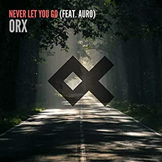 Never Let You Go (feat. Auro)