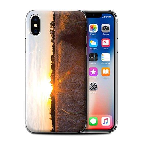 Stuff4 Hülle / Case für Apple iPhone 7 Plus / Blauer Himmel Muster / Sonnenuntergang Kollektion Erntezeit