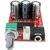 DaoRier XH-M145 Tablero amplificador de potencia digital Yamaha de alta resolución original Tablero amplificador de audio de clase D HD DC12V
