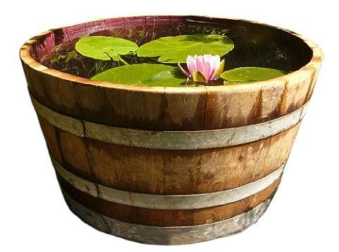 Wine barrel solid oak wood as rain barrel, planter or mini-pond