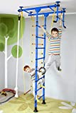 NiroSport FitTop M1 Indoor Klettergerüst für Kinder Sprossenwand für Kinderzimmer Turnwand Kletterwand, TÜV geprüft, kinderleichte Montage, max. Belastung bis ca. 130 kg (Blau)