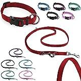CarlCurt Classic-Line Hundehalsband & Hundeleine im Set, aus strapazierfähigem Nylon, XS 22-35cm & XS 1,90m, rot