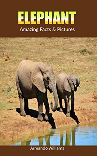 Elephant: Amazing Facts & Pictures (English Edition)