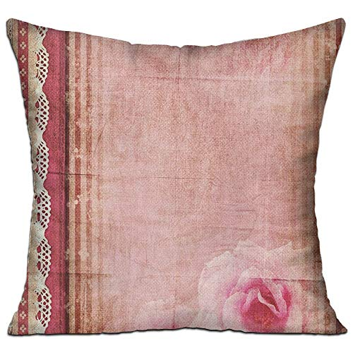 MLNHY Shabby Chic Decor Vintage Style Frame with Lace Borders Old Fashioned Pink Roses Print Decorative Bedroom Decor Throw Pillow Cover 18