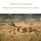 """TOGUARD Trail Game Camera 14MP 1080P Infrared Night Vision Hunting Camera Motion Activated Wild Hunting Cam 120° Detection 0.3s Trigger Speed 2.4"""" LCD Display IP56 Waterproof Bild 1"""