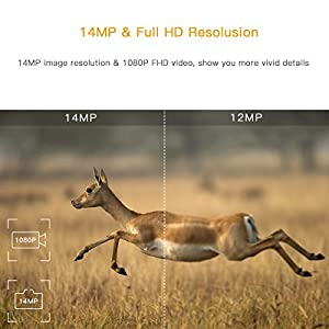 """TOGUARD Trail Wildlife Camera 14MP 1080P Hunting Camera Motion Activated Night Vision 22M Trap Game Camera with 2.4"""" LCD Display IP56 Waterproof IR LEDs for Outdoor Wildlife Hunting and Home Security"""