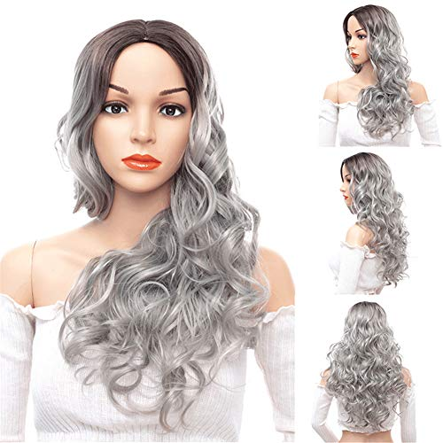 Long Wavy Wig, 66 Cm Sexy Large Wavy Curly Natural Hair Cosplay And Party Wigs (Silver Gray)