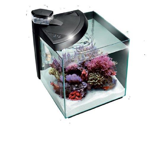 NewaMore Meerwasseraquarium Nano 28 L schwarz Riffaquarium