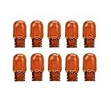 10x WY16W 16W 12V W2,1x9,5d BLINKER LAMPEN FALTSCHACHTEL 10 STÜCK BLINKLEUCHTEN
