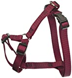 Majestic 12in 20in Hundegeschirr Burgund, SML 1045lbs Dog Pet Products