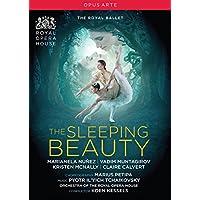Tchaikovsky, P.I.: Sleeping Beauty