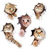 DUOUPA 3D Katzen Wandtattoo Kombination WC-Aufkleber Wandsticker Wandaufkleber Wasserdichte Kühlschrankaufkleber Türaufkleber Küche Wand Dekor