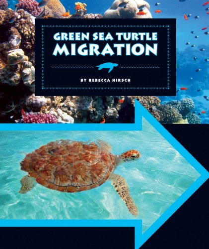 Green Sea Turtle Migration (Animal Migrations)