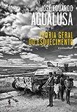 Teoria Geral do Esquecimento (Portuguese Edition)