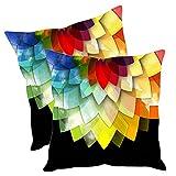 #6: Sleep Nature's Cushion Covers Velvet Set Of 2-24x24 inch