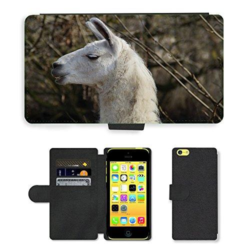 Just Mobile pour Hot Style Téléphone portable étui portefeuille en cuir PU avec fente pour carte//m00139745Lama Tête visage Pose Bétail//Apple iPhone 5C