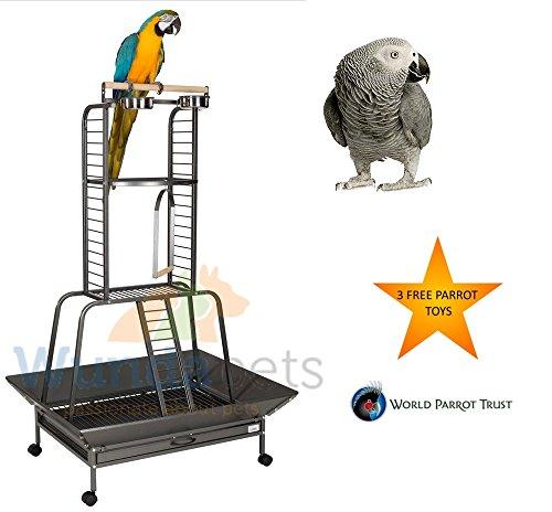 Liberta Turret Stand Dark 2nd Ed Medium Large Parrot Metall Play Sitzstange auf Rollen - Metal Supply Grille