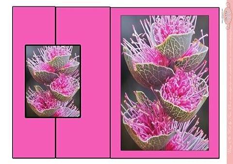 Feuille A4 pour confection de carte de vœux - foldback carte in hot pin flowers of the outback par Sally McIntyre