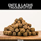 Ente & Lachs Adult | 15 kg | Getreidefrei | 70% Fleischanteil | Superfoods | Trockenfutter | Grünlippmuschel | für ausgewachsene Hunde - von George & Bobs -