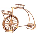 #5: A&E Cane Bicycle Shaped brown Flower Stand for 3 Pots Garden Decor