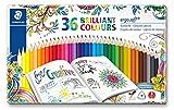 Lápices de colorear triangulares de Staedtler Ergosoft 157SB12, color Assorted Tin of 36