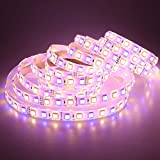 LTRGBW Super helle SMD5050 LED-Streifen-Beleuchtung 24V DC 360LEDs RGB + warmes weißes RGBWW LED flexibles Streifen-Lichter 5M Silikon-wasserdichtes IP65